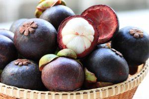 mangosteen-plod